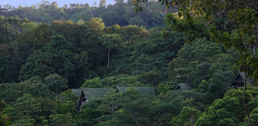 cabins_1_mbeliling_ecolodge_flores_indonesia